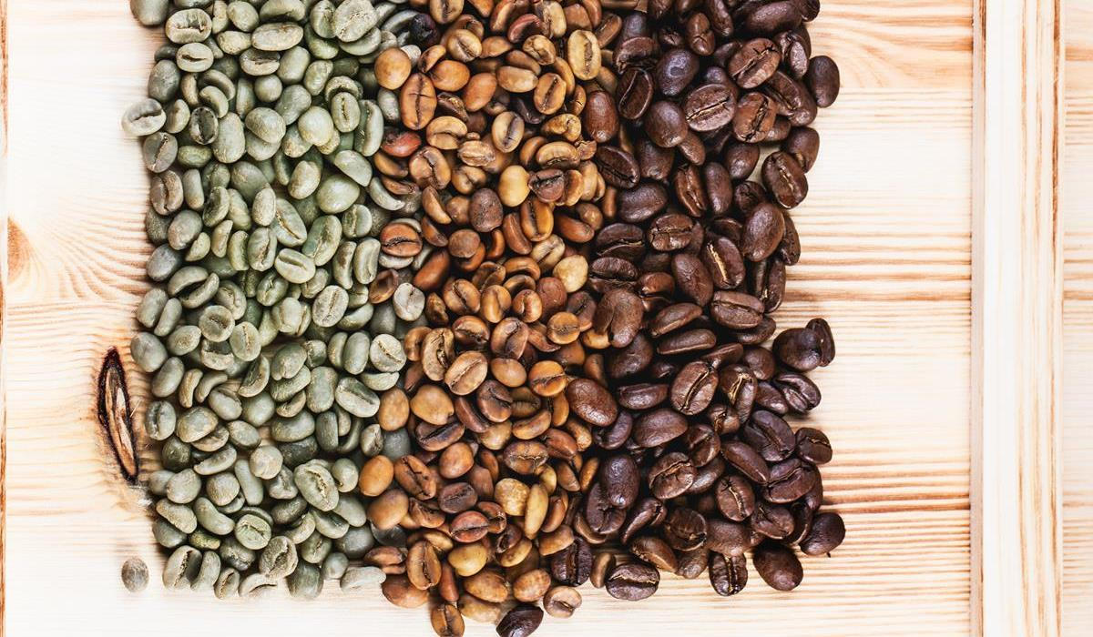 kawa, kofeina i kwas chlorogenowy