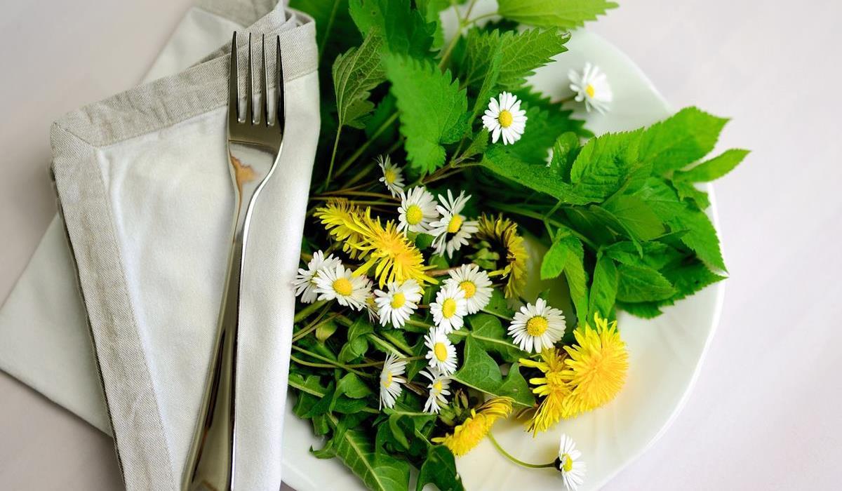 zioła na talerzu